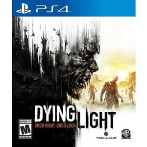 WB Games Dying Light Ps4